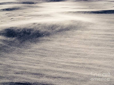 Juan Bosco Forest Animals Royalty Free Images - Wind drift snow flying over snow surface refief Royalty-Free Image by Stephan Pietzko