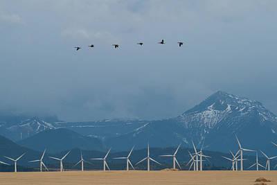 Zamora Photograph - Wind Energy Production, Alberta Canada by Eric Zamora