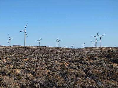 Photograph - Wind Farm by Ron Roberts