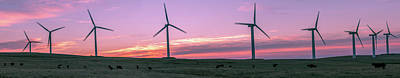 Wind Farm With Cows At Sunrise, Cowley Art Print
