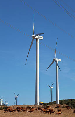 Farmscapes Photograph - Wind Generators Or Windmills by Panoramic Images