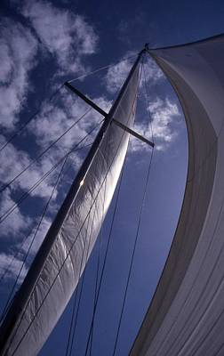 Photograph - Wind In Our Sails by John Schneider