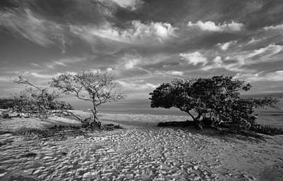Photograph - Wind On The Key by Stephen Mack
