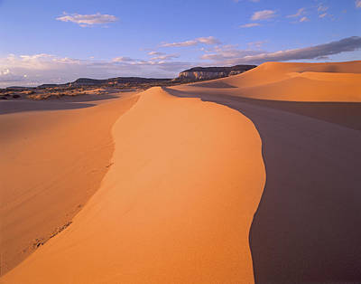Photograph - Wind Ripples In Sand Dunes by Tim Fitzharris
