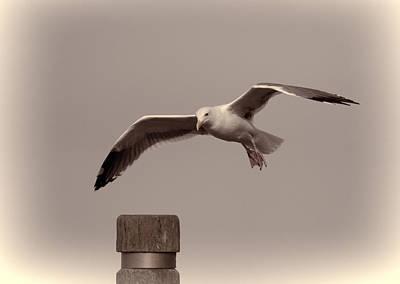 Photograph - Wind Shear II  by HW Kateley