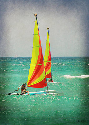 Art Print featuring the photograph Wind Surfing by Lorella  Schoales