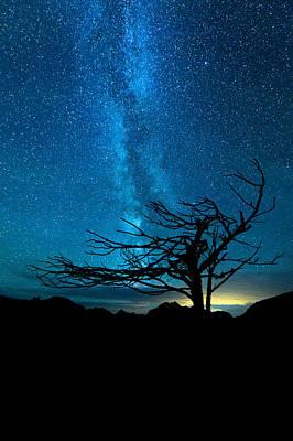 Beautiful Photograph - Chance by Dustin  LeFevre