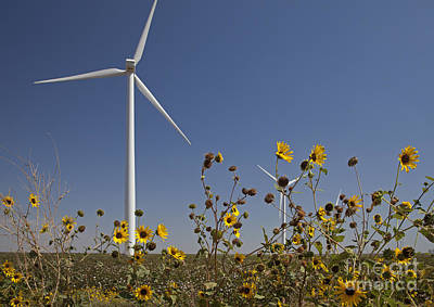 Photograph - Wind Turbine And Sunflowers by Jim West