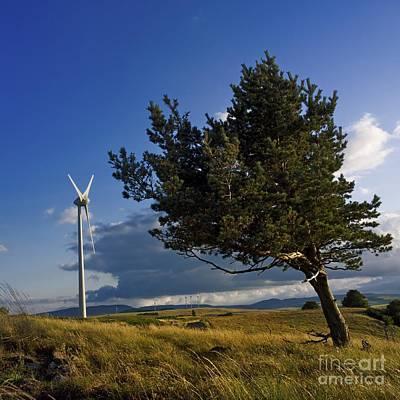 Wind Turbine And Tree On The Plateau Of  Cezallier. Auvergne. France. Art Print by Bernard Jaubert
