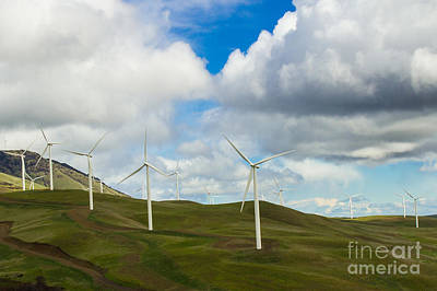 Photograph - Wind Turbines by Deanna Proffitt