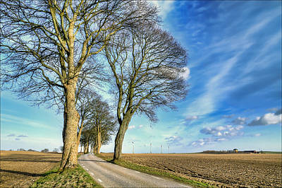 View Photograph - Winding Country Road by EXparte SE