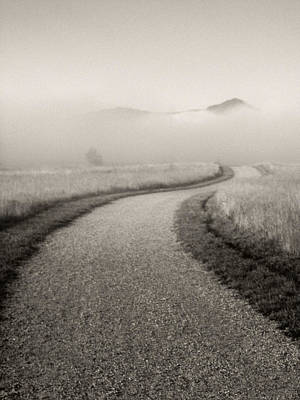 Winding Path And Mist Art Print by Marilyn Hunt
