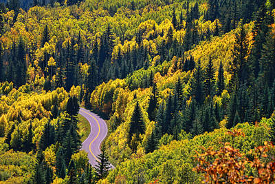 Photograph - Winding Road by Allen Beatty