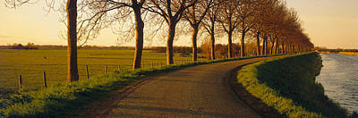 Dike Photograph - Winding Road, Trees, Oudendijk by Panoramic Images