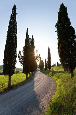 Gravel Road Photograph - Winding Road, Tuscany, Italy by Peter Adams