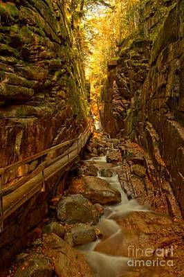 Photograph - Winding Through Flume Gorge by Adam Jewell