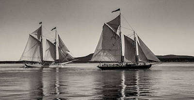 Photograph - Windjammers No. 1 by Fred LeBlanc