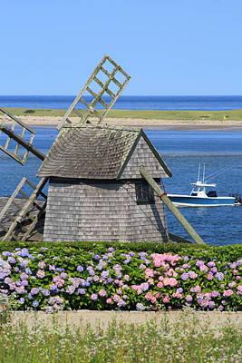 Windmill And Hydrangeas Chatham Waterfront Cape Cod Art Print