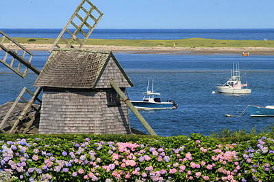 Windmill And Hydrangeas On Chatham Waterfront Cape Cod Art Print