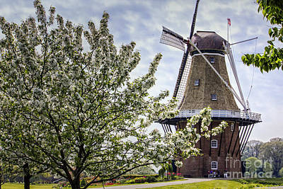 Digital Art - Windmill At Windmill Gardens Holland by Georgianne Giese