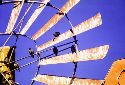 Photograph - Windmill Birds by Wes Jimerson