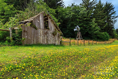 Photograph - Windmill Flowers And A Barn by James Eddy