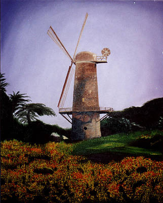 Windmill In Golden Gate Park Art Print by Alexandra Louie