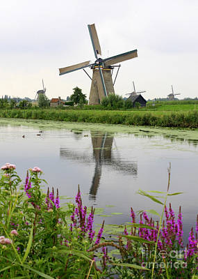Europe Photograph - Windmills Of Kinderdijk With Flowers by Carol Groenen