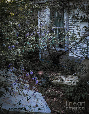 Photograph - Window And Flowers by Ken Frischkorn