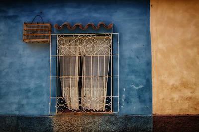 Window And The Birdcage Art Print