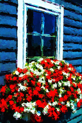 Photograph - Window Box by Karol Livote
