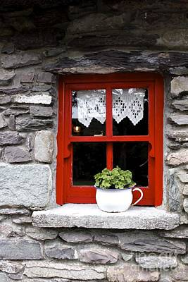 Photograph - Window Box by Susan Leake