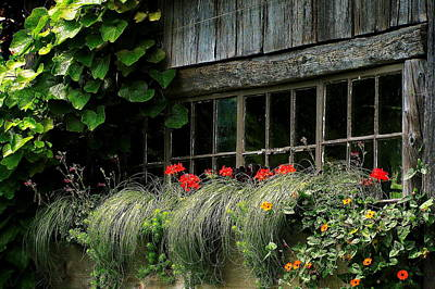 Photograph - Window Boxes by Jeff Heimlich