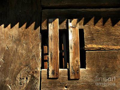 Photograph - Window  by Daliana Pacuraru