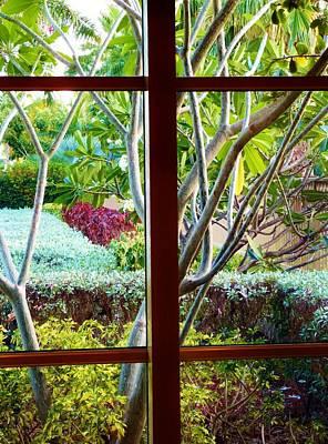 Art Print featuring the photograph Window Garden by Amar Sheow