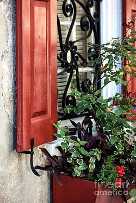 Southern Comfort Photograph - Window Garden by John Rizzuto