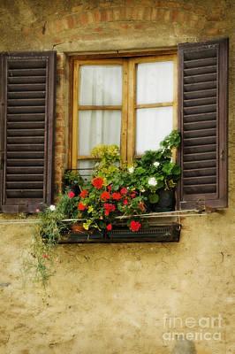 Window In Florence Original