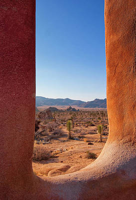 - Window Into Joshua Tree National Park by Sandra Selle Rodriguez