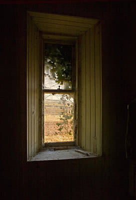 Photograph - Window On The Past by Liz  Alderdice