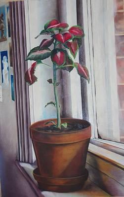 Terracotta Room Painting - Window Sill In Shepherds Bush London by Loueen Morrison