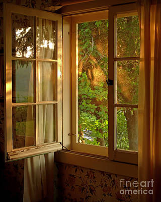 Photograph - Window by Susan Kimball