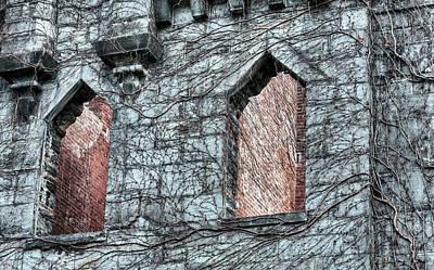 Abandoned Insane Asylum Photograph - Windows by JC Findley