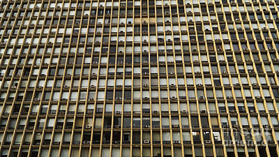 Photograph - Windows by Mark Thomas