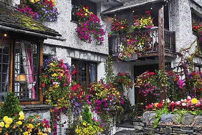 Windows Of Flowers Art Print