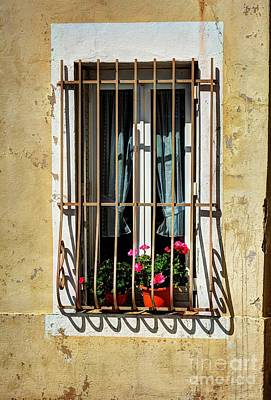 Photograph - Windows Of Vienne  by Mel Steinhauer