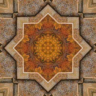 Photograph - Windows To Autumn Mandala 2 by Beth Sawickie