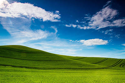 Windows Xp Art Print