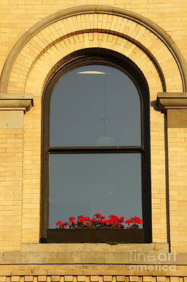 Photograph - Windowsill Gerraniums by John  Mitchell