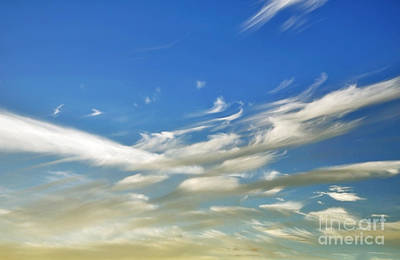 Photograph - Windswept 5 - Convergence  by Kaye Menner