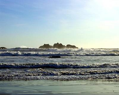 Photograph - Windswept Coast by Will Borden